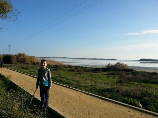 By the Larnaca Salt Lake