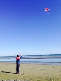 Kite flying on the Beach Oroklini 2017